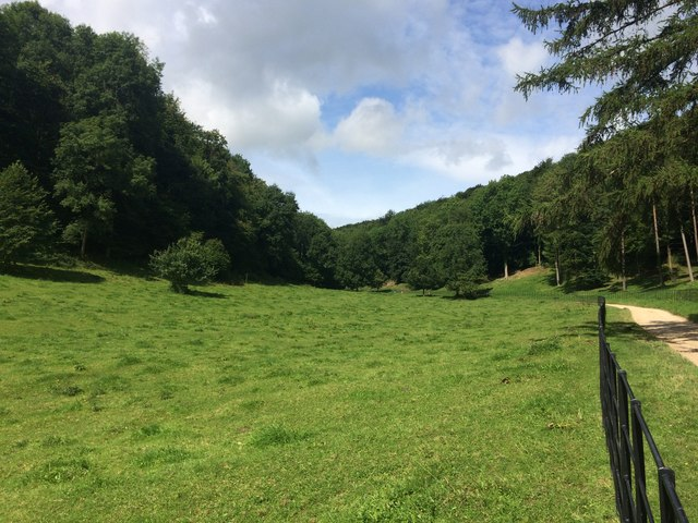 Valley at Woodchester Park