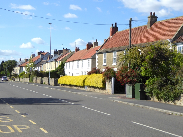 Cottages at High Coniscliffe