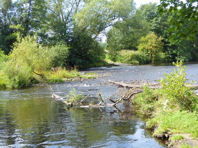River Tees near Merrybent