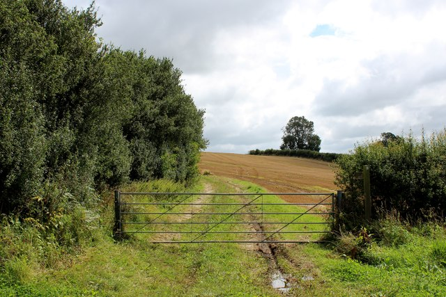 Footpath beside Oak Cliff Wood