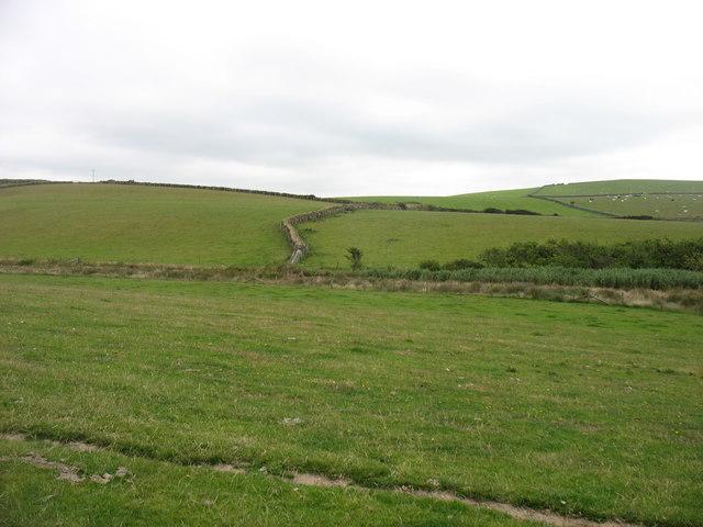 Farmland near Hen Borth
