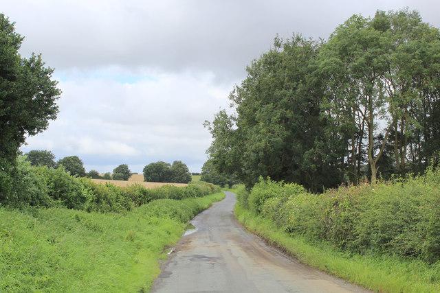 Road to Kirkham beside Black Plantation
