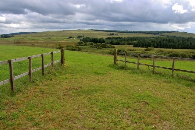 Pastureland at Lochgate