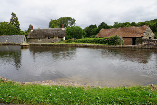 Duck pond in East Quantoxhead
