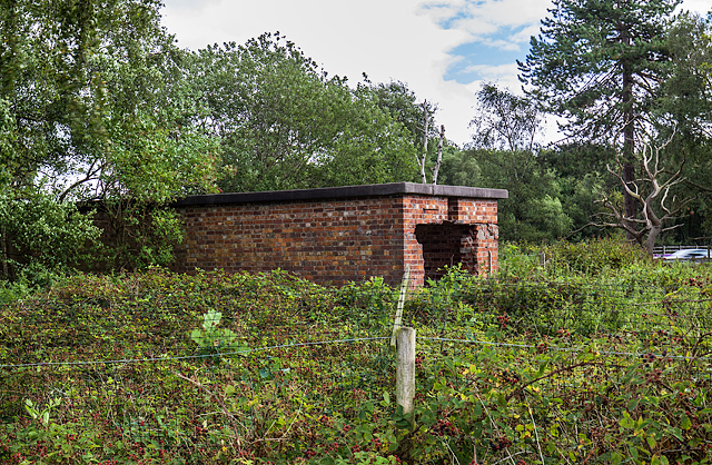 WWII Cheshire, RAF Cranage, near Middlewich - sleeping shelter (7)