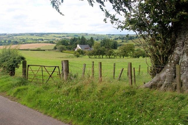 Field gate at Ladybrow
