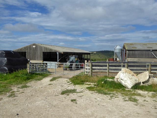 Farmyard, Clapham Barn