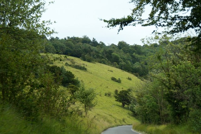 The Zig Zag Road on Box Hill