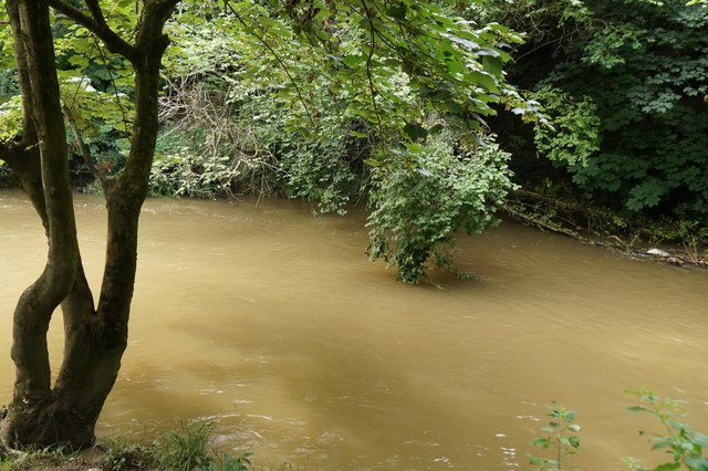 River Mole at the stepping stones, Box Hill