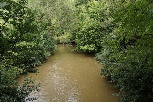 The River Mole at Box Hill
