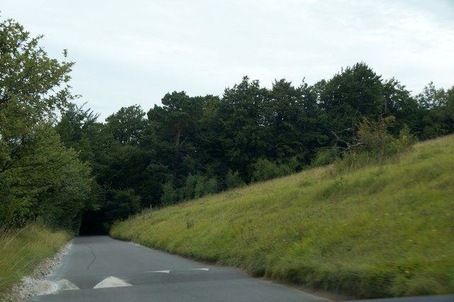 Zig Zag Road, Box Hill