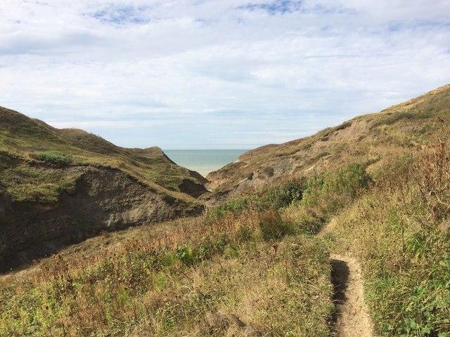 Public path to Shepherd's Chine, Isle of Wight