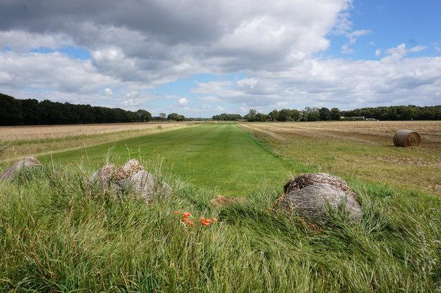 Farmland on Riccall Common