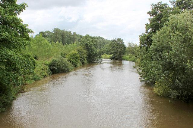 River Derwent from the Suspension Bridge at Low Hutton