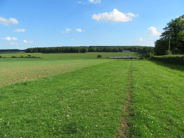 Farmland west of Oakley