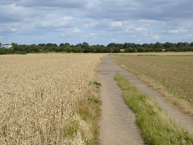 Farm track near Merrybent