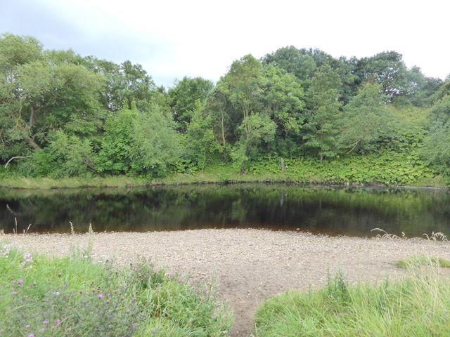 River Tees near Cleasby