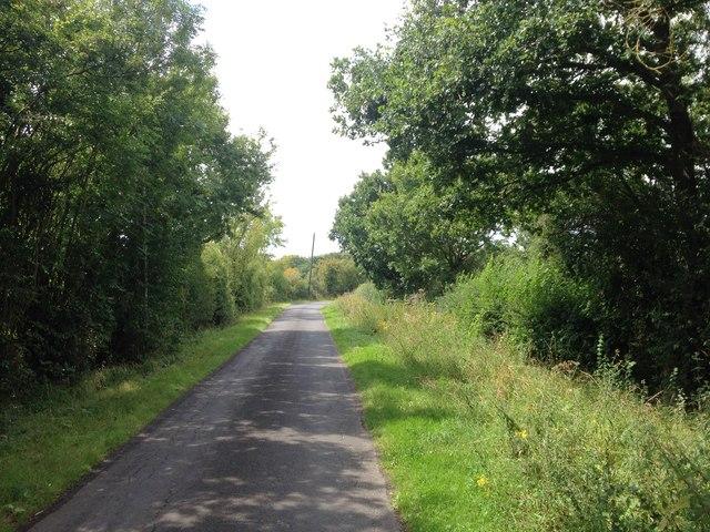 Tilden Lane, near Marden