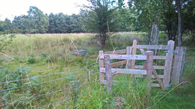 Gate and trough beside Humberhead Peatlands path