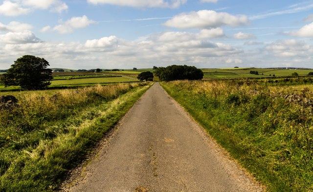 Flat Lane