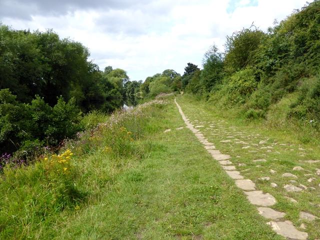 Teesdale Way near Baydale Farm