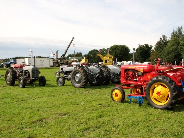Display of vintage Massey Ferguson tractors