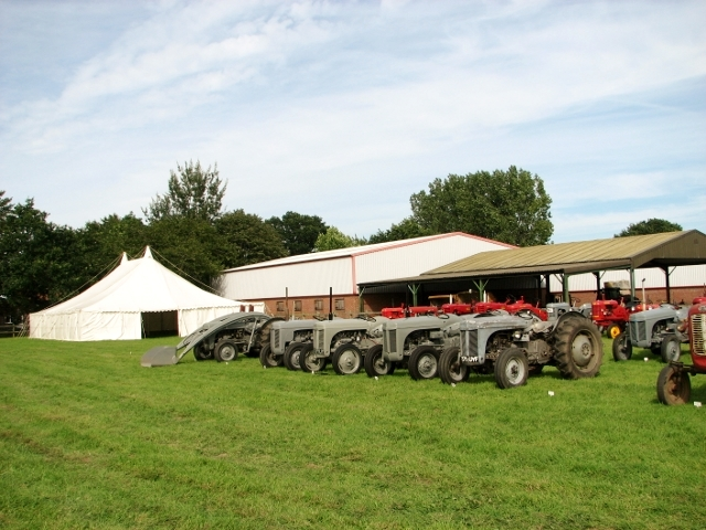 Ferguson TE 20 tractors on display