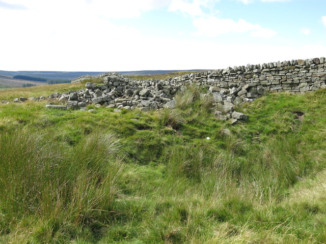 Shake hole and ruined sheepfold at High Puddingthorn
