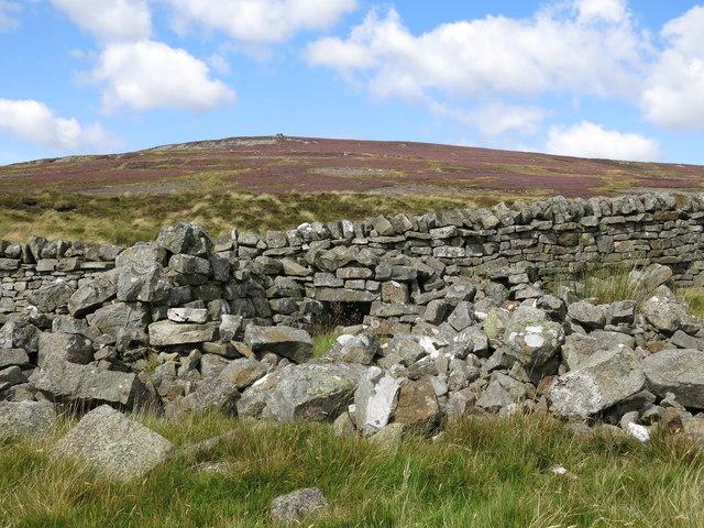 Ruined sheepfold at High Puddingthorn
