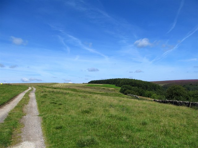 The road to Kepwick