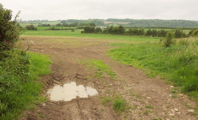Farmland by Ridgeway Lane