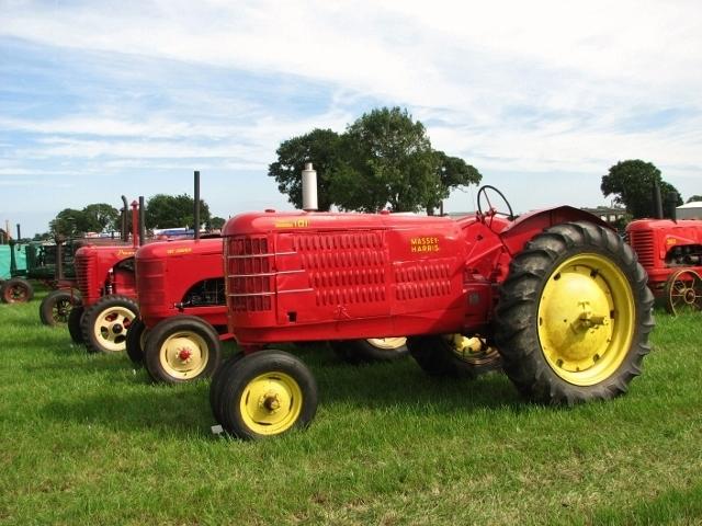 Vintage Massey-Harris tractors on display