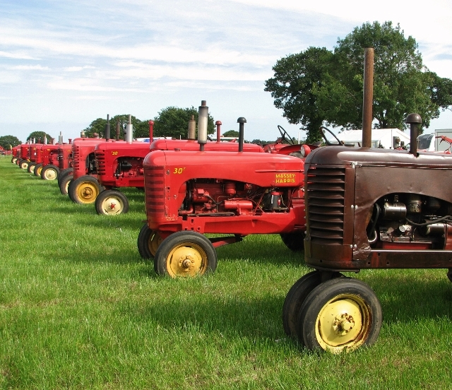 Massey-Harris  tractors on display