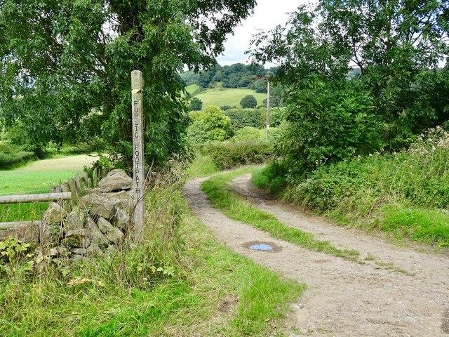 The Ecclesbourne Way below Manifold Farm