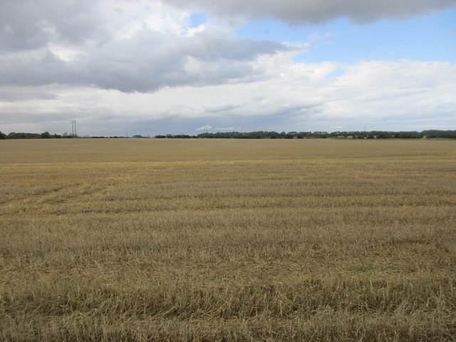 Stubble field between Atwick and Bewholme