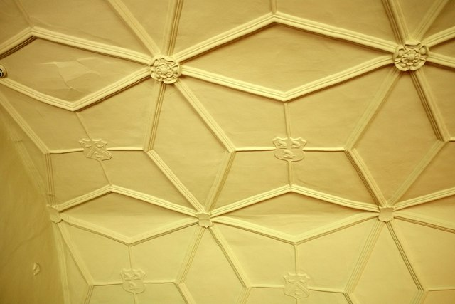 Ceiling, Lytes Cary
