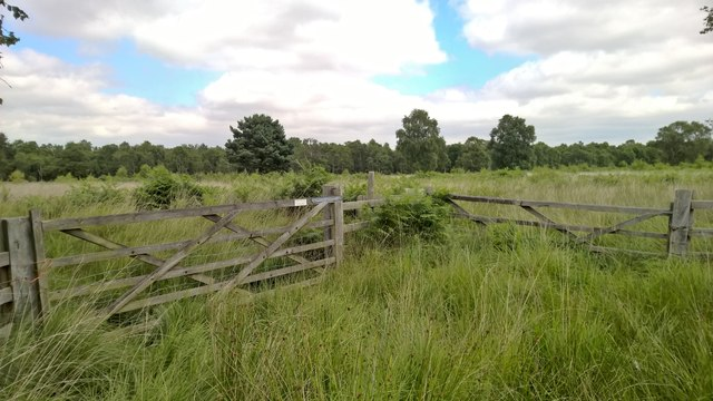 Pair of gates in midst of Crowle Waste or Moors