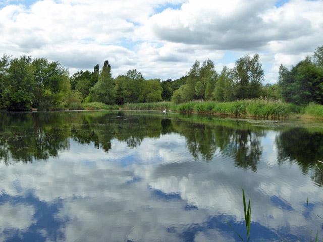 Fishing Lake, Bedfont Lakes Country Park