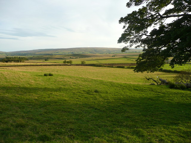 View from the footpath from Newby to the A65