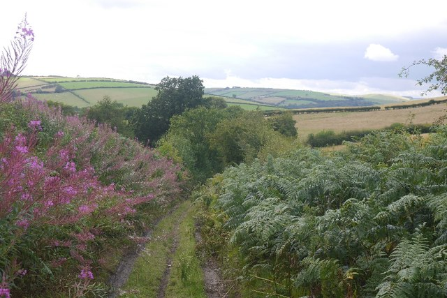 Old road over Stow Hill