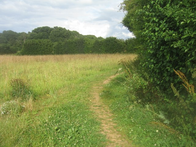 Path to Well's Copse