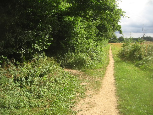 Footpath by Well's Copse