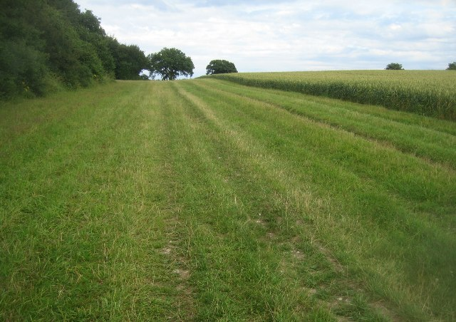 Wayfarers Walk passing South Wood