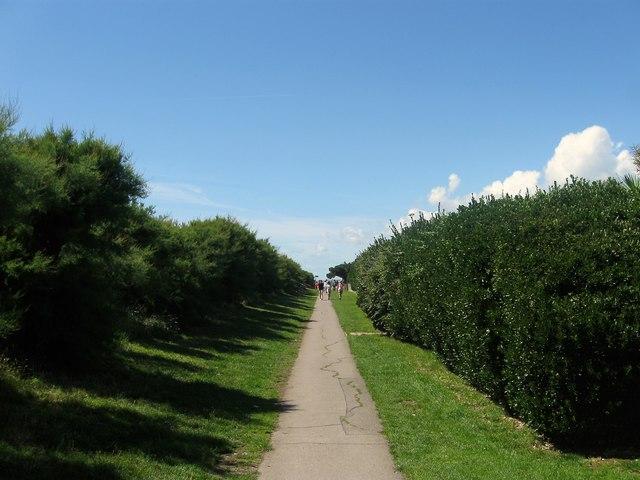 Pattersons Walk, Ferring