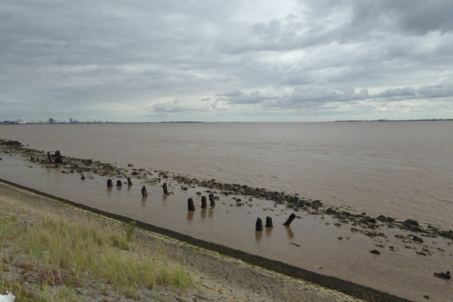 Banks of the Humber