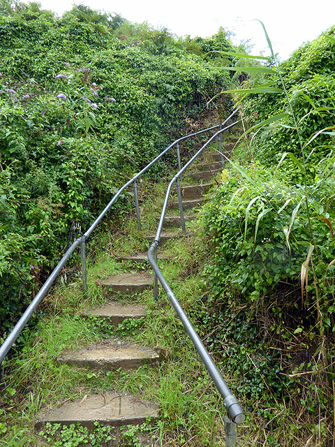 Steps up from the beach