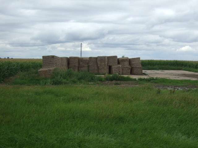 Bales and crop field