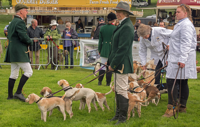 The Lowther Show - 12 August 2017 (5)