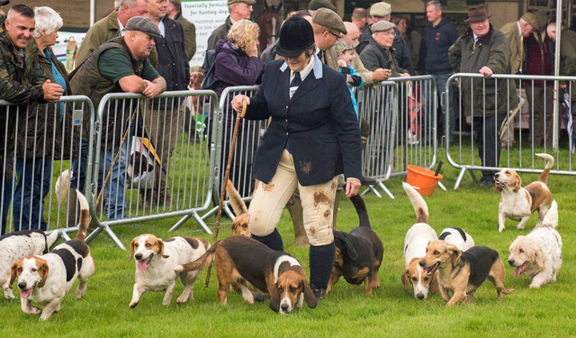 The Lowther Show - 12 August 2017 (6)