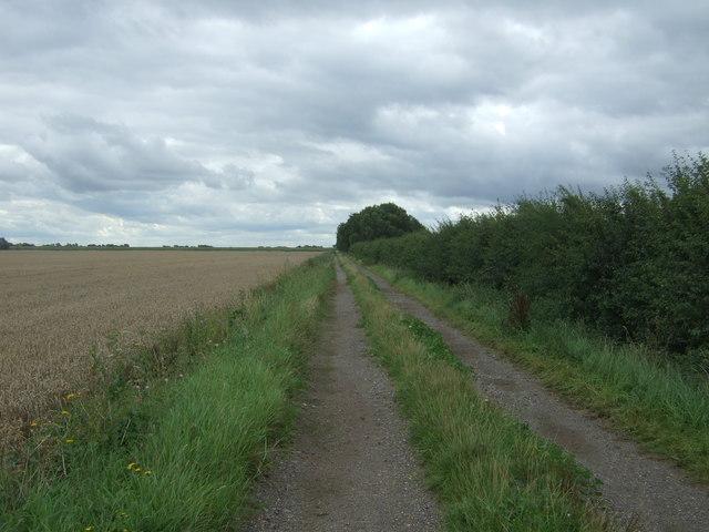 Farm track north east of Manea